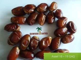 Aseel GAQ Grade